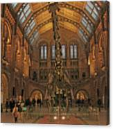 The Museum Of Natural History... London Canvas Print