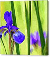 The Mystery Of Spring - Paint Canvas Print