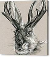 The Mythical Jackalope Canvas Print