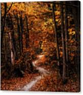 The Narrow Path Canvas Print