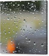 The Natural Lens That Is A Raindrop Canvas Print