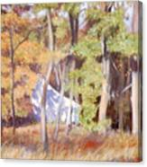 The Neighbor In Back Canvas Print