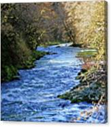 The Nestucca River Canvas Print
