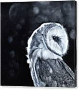 The Night Watcher Canvas Print