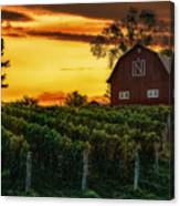 The North Country Canvas Print