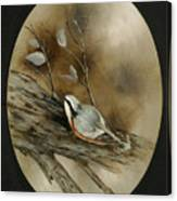 The Nuthatch Canvas Print