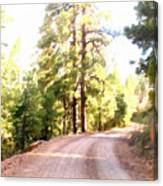 The Old Dirt Road Canvas Print