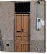 The Old Door. Canvas Print