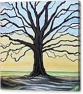 The Stained Old Oak Tree Canvas Print