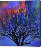 The Old Oak Tree Canvas Print