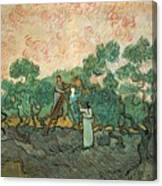 The Olive Pickers Canvas Print