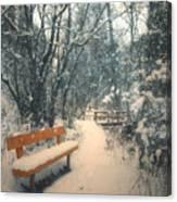 The Orange Bench Canvas Print