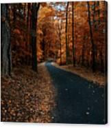 The Orange Road Canvas Print