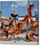 The Orioles Bicycle Canvas Print