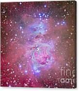 The Orion Nebula Region Canvas Print