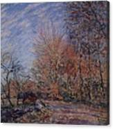 The Outskirts Of The Fontainebleau Forest Canvas Print