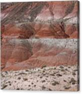 The Painted Desert  8020 Canvas Print