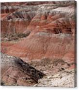 The Painted Desert  8024 Canvas Print