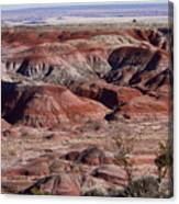 The Painted Desert  8062 Canvas Print