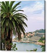 The Palm Is Always Associated With Summer, Sea, Travelling To Warm Countries And Rest Canvas Print