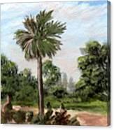 The Palmetto Tree Canvas Print