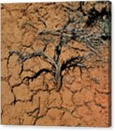 The Parched Earth Canvas Print