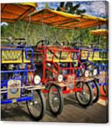 The Park Bikes Canvas Print