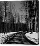 The Pass Canvas Print