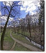 The path by the river in the park Sub Arini Sibiu Romania Canvas Print