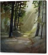 The Path Love Took Canvas Print