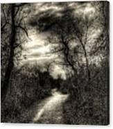 The Path Seldom Taken Canvas Print
