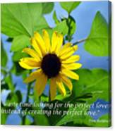 The Perfect Lover  Canvas Print