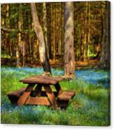 The Perfect Picnic Spot Canvas Print