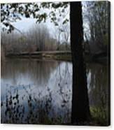 The Pine River Canvas Print