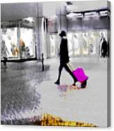 The Pink Bag Canvas Print