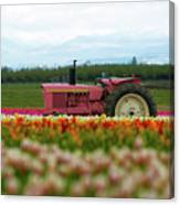 The Pink Tractor Canvas Print