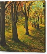 The Plains Of Abraham Canvas Print