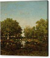 The Pool, Memory Of The Forest Of Chambord Canvas Print