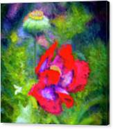 The Poppie Calls Canvas Print