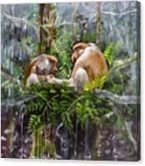 The Probosis Monkey Family Canvas Print