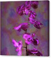 The Purple Orchid Canvas Print