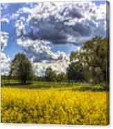 The Quiet Farm Canvas Print