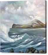 The Rabbit Island Canvas Print