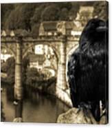 The Raven Of Knareborough Castle Canvas Print