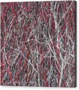 The Red And The Grey Canvas Print