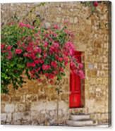 The Red Door Canvas Print
