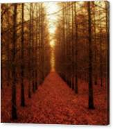 The Red Forest Canvas Print