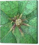 The Rhody Bud Canvas Print
