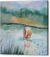 The Rice Planter Canvas Print
