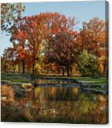 The Rich Autumn Colors In Forest Park. Canvas Print